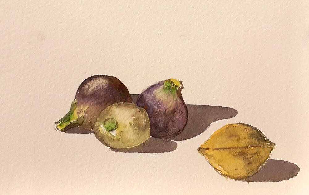 Trois Figues par Yolande Gerdil